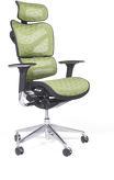 Bemondi Ergonomiczny fotel biurowy ERG ...